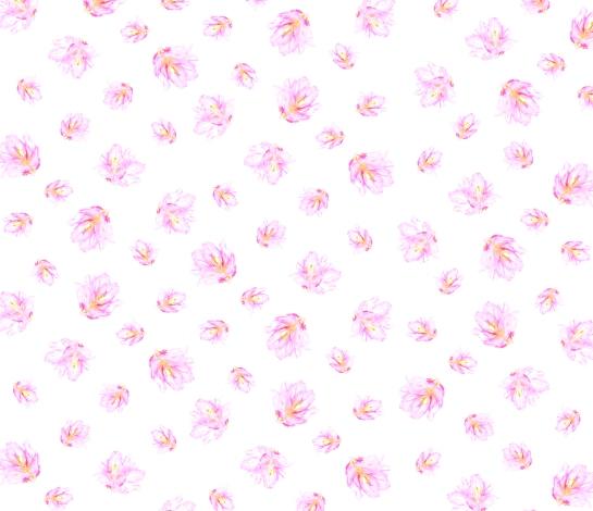 Flower2_Pattern_MadeleineBrady